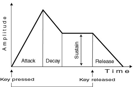 The four phases of a standard ADSR envelope.